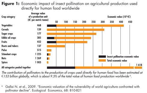 Ramifications of CCD on Food Production